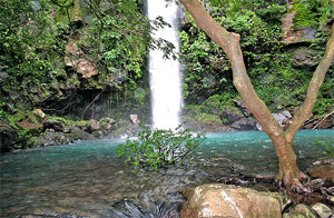 Waterfalls Guanacaste, Tours & Activities